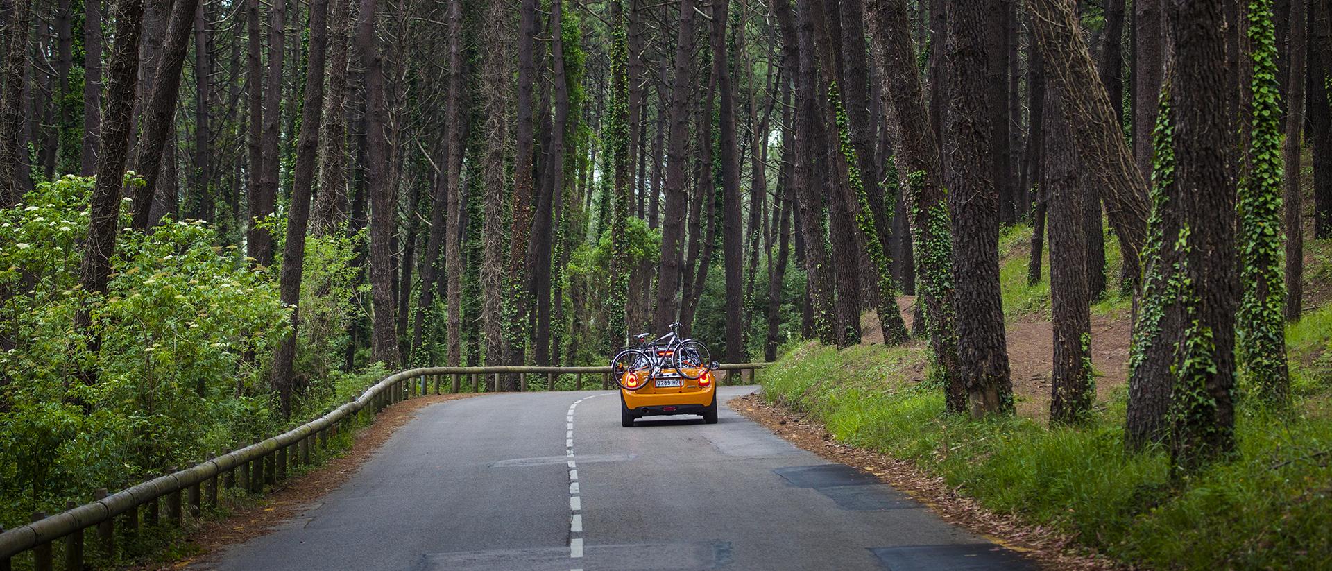 Porta bicicletas, porta animales Cantabria - Autobikeworld